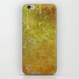 Lake Reflection iPhone Skin