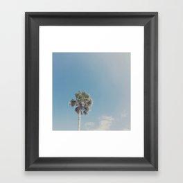 Lone Palm Framed Art Print