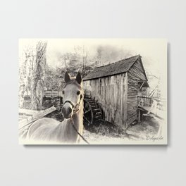 Horse At The Old Mill Metal Print