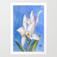 Vivid Orchid Art Print