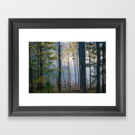 Mystic Forest - Early Morning Glow in Smoky Mountains Framed Art Print