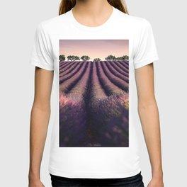 lavender sunset flower field field of lavender purple flowers T-shirt