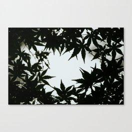 Tokyo's Leaves Canvas Print