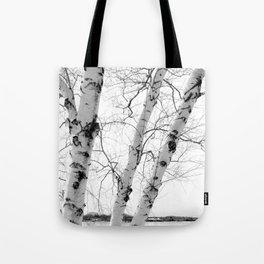 White Birch Tote Bag