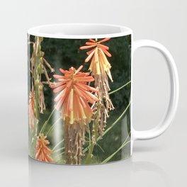 Orange Starburts - Twilight Paintings Dana Tinnell Coffee Mug