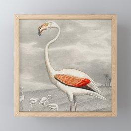 Exotic Flamingo Bird - Minimalism Drawing Framed Mini Art Print
