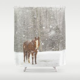 Western Winter Wonderland Shower Curtain