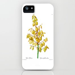 Yucca gloriosa Flower Detail, Yucca a feuilles entieres, Palm Lily or Spanish Dagger, Plate 327 iPhone Case