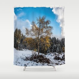 Hibernating Birch Shower Curtain