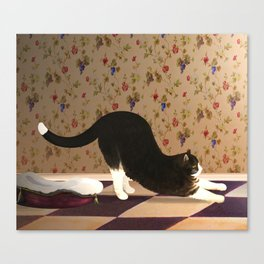 Black and White Cat Stretching Canvas Print