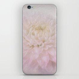 Beautiful Dreamer iPhone Skin