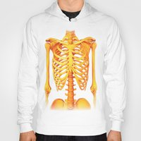 skeleton Hoodies featuring Skeleton by ShannonPosedenti