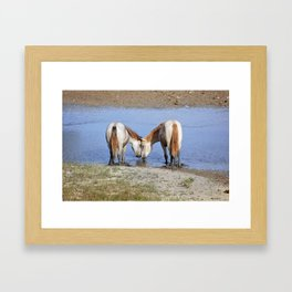 Horses in love Framed Art Print