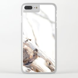 Drifted Palm Clear iPhone Case