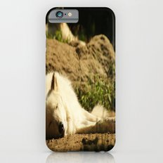 Sleeping white wolf in the summer sun Slim Case iPhone 6s