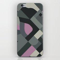 Langley 45 iPhone Skin