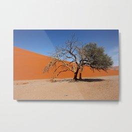 NAMIBIA ... Namib Desert Tree IV Metal Print