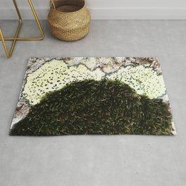 Watercolor Moss, Moss 07, with Lichen, Crestone, Colorado Rug