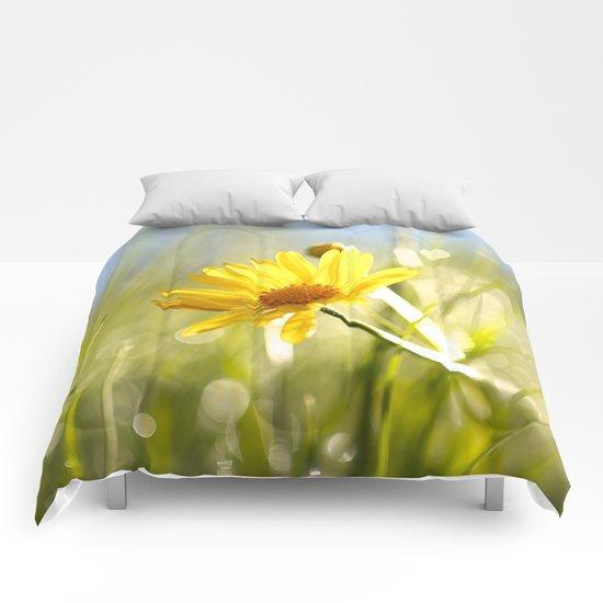 Hello Daisy Comforters
