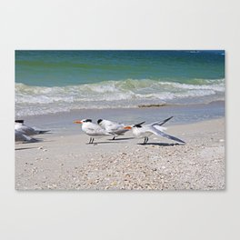 It's Just a Little Gas Canvas Print
