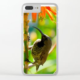 """Aloe Visitor"" by ICA PAVON Clear iPhone Case"