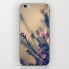 we are more iPhone & iPod Skin