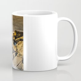 Smoothing The Rough Coffee Mug