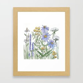 Asters and Wild Flowers Botanical Nature Floral Framed Art Print