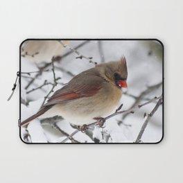 Female Cardinal Laptop Sleeve