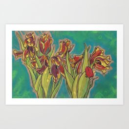 Tulips Sketch Dying Flowers Floral Pastel Art Print