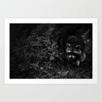racoon Art Prints featuring Racoon by Marina Andräde