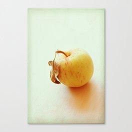 Simply Sweet Canvas Print