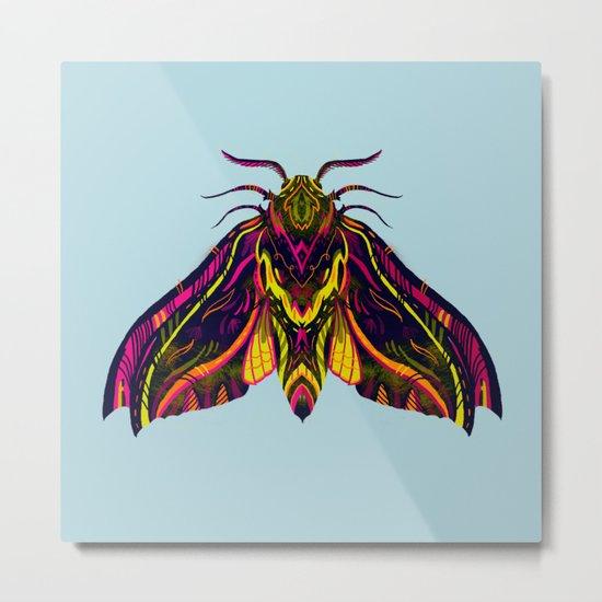 Elephant Hawk Moth Metal Print