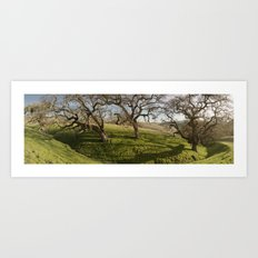 Oak Ridge Art Print