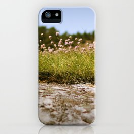 Koster's flowers iPhone Case