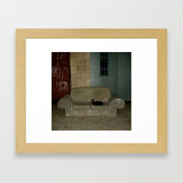 Black Cat On Love Seat, Old Jaffa,Israel Framed Art Print