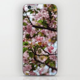 Yorkville Blossoms iPhone Skin