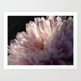 Pink Light Art Print