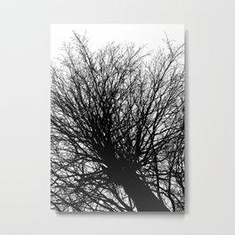 Branches 6 Metal Print