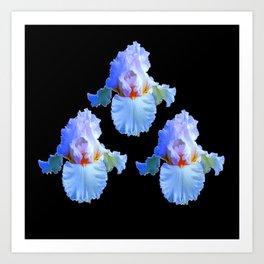 PASTEL BLUISH WHITE IRISES Art Print