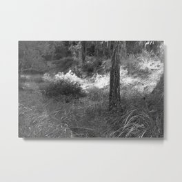 Black and white country forest Metal Print