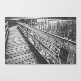 Marsh Path 4 Canvas Print