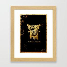 COLUMNA DORICAE  ART Framed Art Print