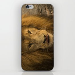 Lion - Time To Eat iPhone Skin