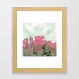 Succulenta Framed Art Print