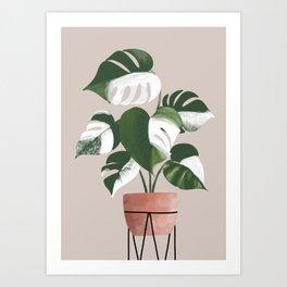 White Monstera Deliciosa Art Print