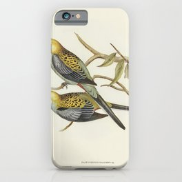 Pale-headed Parakeet (Platycercus palliceps) illustrated by Elizabeth Gould (1804-1841) for John Gou iPhone Case
