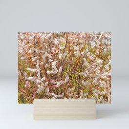 Scrub wildflowers Mini Art Print