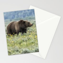 Smiling Grizzly #399 Stationery Cards