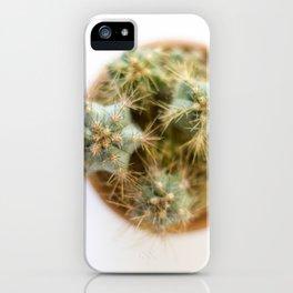 cactus 2 iPhone Case